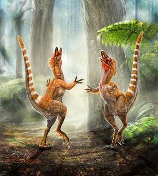 Mélanosomes chez Sinornithosaurus
