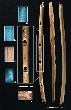 Flûte vieille de 35 000 ans découverte en Allemagne