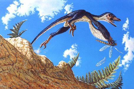 Reconstitution de Sinornithosaurus