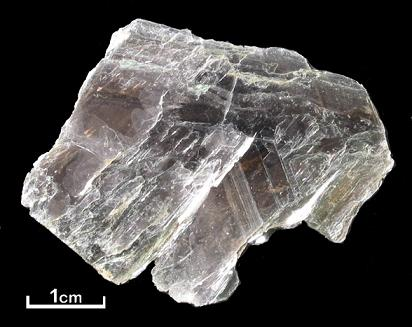 Muscovite